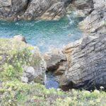 Les visites près de la mer dans le Morbihan